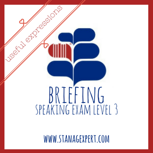 BRIEFING-USEFUL PHRASES